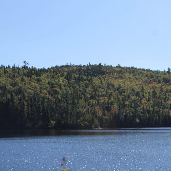 Paisaje de Saguenay