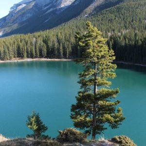 Nos quedamos enamorados de este turquesa en el Lago Minnewanka