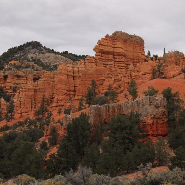 Rocas rojas del Red Canyon