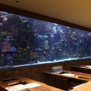 Gigantesco acuario en la entrada del Hotel Mirage, con un montón de especies tropicales