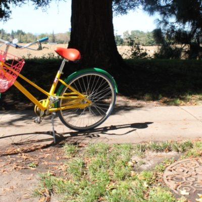 Bicicletas colores Google que encontramos en todo el campus