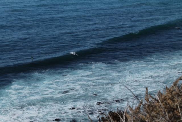 Cazamos algunos surfistas también