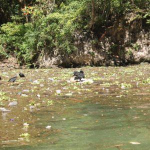 Una pena que el río estuviera lleno de basura en algunos puntos