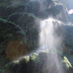 Una pequeña cascada que con el pasar de los años ha creado unas placas de musgo que parece un árbol de navidad