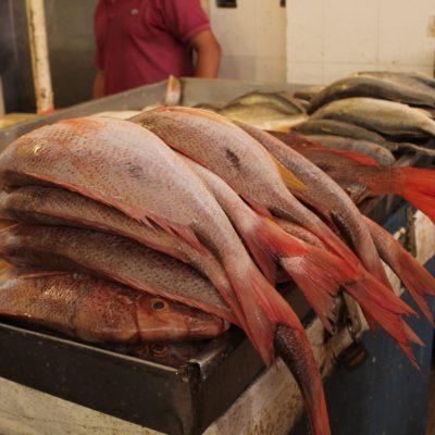 Pasamos de buena mañana y los puestos rebosaban de pescados; sin embargo para el mediodía ya casi no quedaba nada
