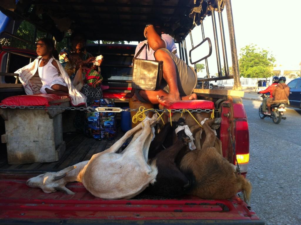 Camioneta Guajira