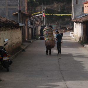 Detrás de toda esa pila de cestas hay un hombre que las carga aguantando todo el peso con una cinta en la cabeza