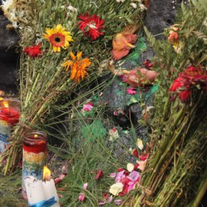 Las cabezas de las 2 gallinas se quedaron en el altar