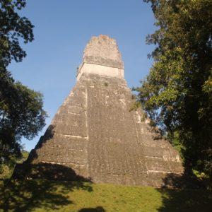 A diferencia de los templos que habíamos visto hasta entonces, las pirámides de Tikal son más altas, con base más pequeña y por lo tanto lados más empinados