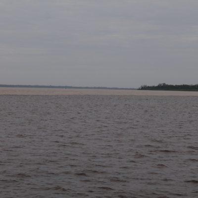 Una vez en el río Negro, se ve el río color cafe con leche al fondo