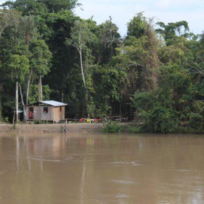 Amazonas casa