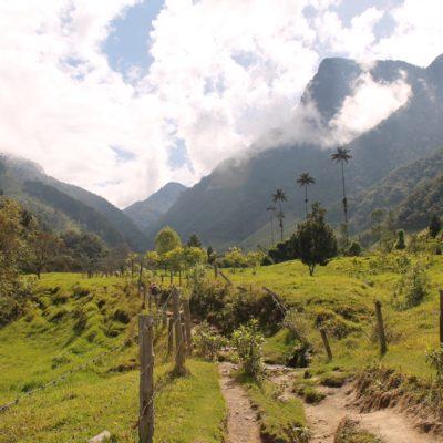Así empezaba nuestra caminata por el Valle del Cocora