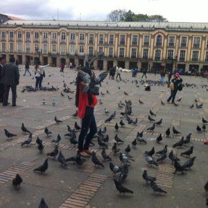 La plaza Bolivar estaba llena de palomas y, a su vez, de gente que les daba de comer para que se les posaran en las manos