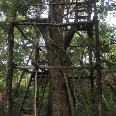 Esta torre-árbol, aunque no era muy estable, ofrecía unas vistas geniales