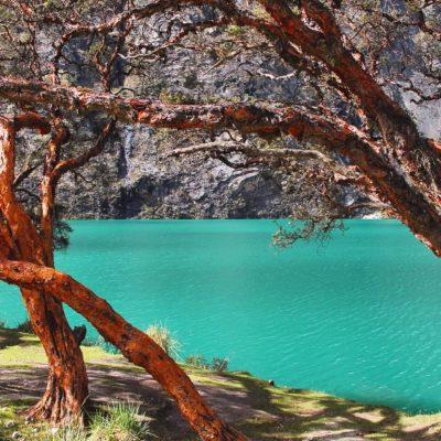 El color turquesa de los lagos glaciares con el contraste de estos árboles naranjas nos cautivó