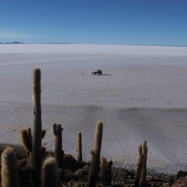 Lo mejor de subir a la isla, es poder ver la inmensidad del manto blanco del salar