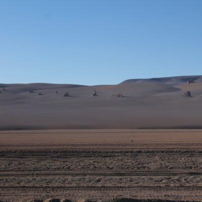 Nosotros no pudimos ver nada en este desierto que nos recordara a Salvador Dalí