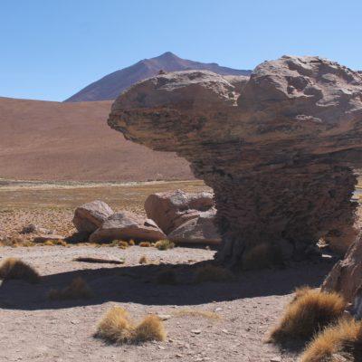 Alrededor de la laguna Cañapa se encuentran estas formaciones de restos volcánicos que parecen campañones gigantes