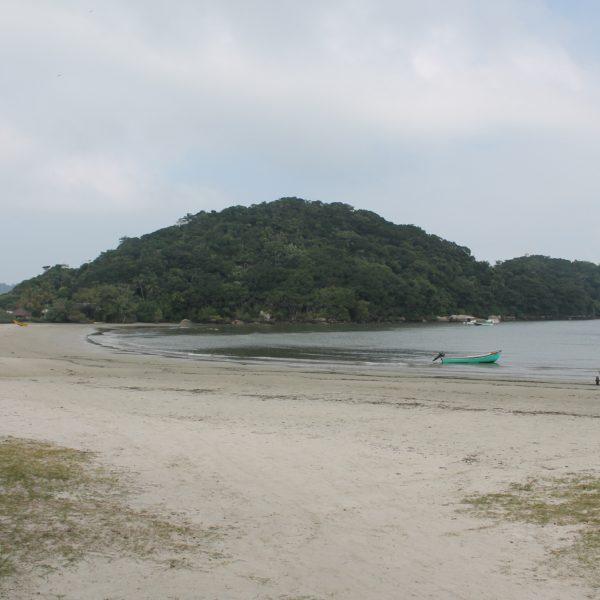 La isla tiene muchas partes de mata espesa