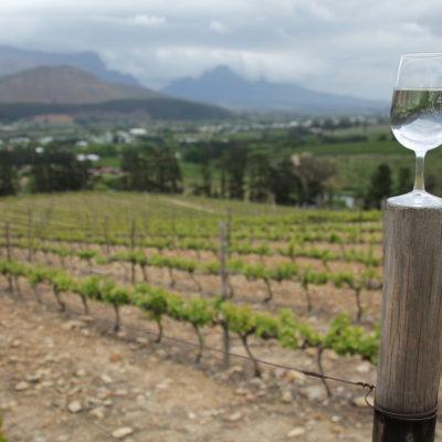 Los viñedos y las vistas de la bodega Dieu Donné Vineyards