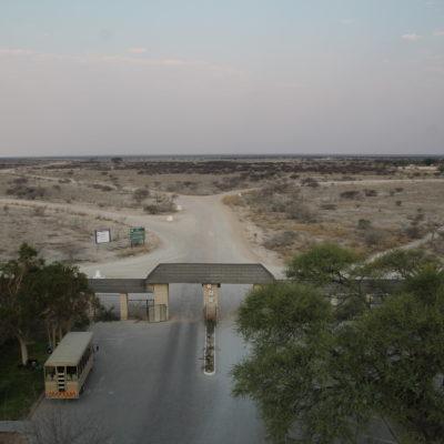 Desde la torre de Okaukuejo, ya se puede ver lo árido que es el Parque Nacional de Etosha