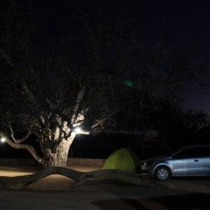 En nuestra tienda, bajo este árbol y junto con la compañía de las estrellas, pasamos una noche agradable
