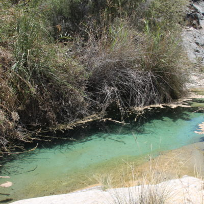 Aunque el agua de las piscinas naturales estaba muy limpia y un precioso color, no terminaba de convencernos la idea de bañarnos