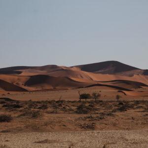Las sinuosas formas del desierto