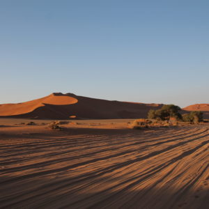 Debido a la arena, es imposible recorrer este camino a Dead Vlei sin un 4x4