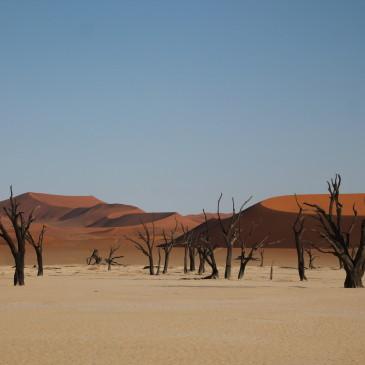 Desierto de Namib (días 409-413)