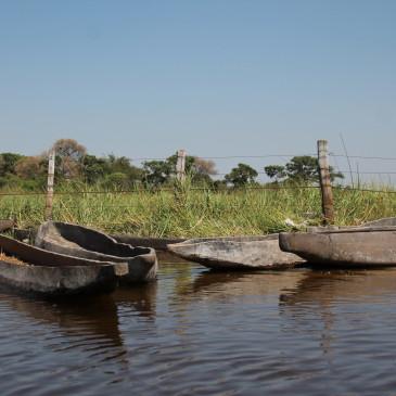 Delta del Okavango (días 414-418)