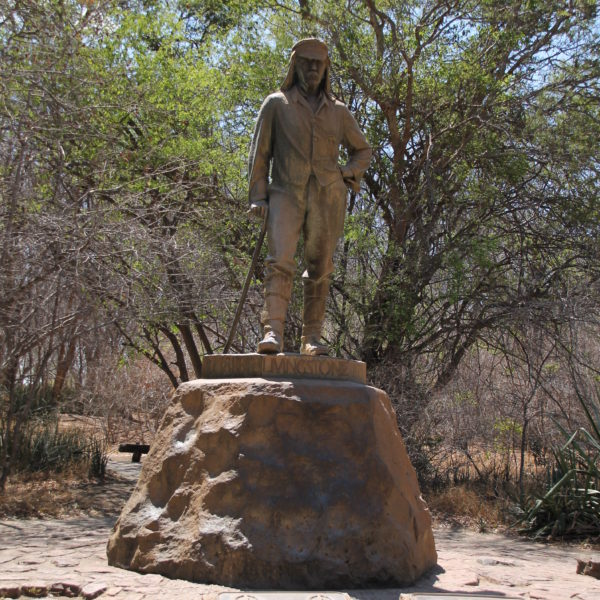 El doctor Livingstone (¿supongo?), descubridor de las cataratas y protagonista de la célebre frase