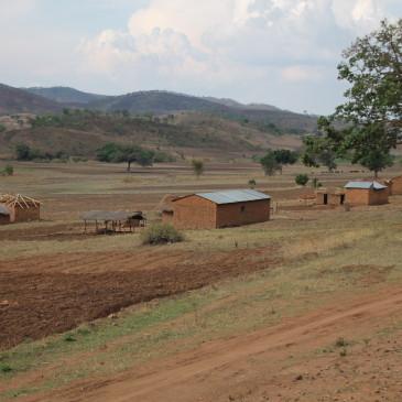 Tren Tazara, cruzando de Zambia a Tanzania (días 425-430)
