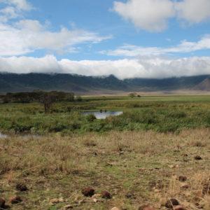 ¿Podéis ver los hipopótamos en este paisaje tan bonito?