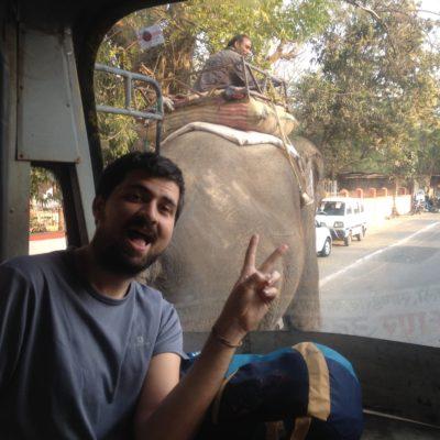 Lo típico que vas en un autobús por la ciudad y adelantas a un elefante