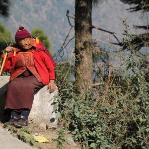Como esta monja budista, nos encontramos a muchos en Dharamsala