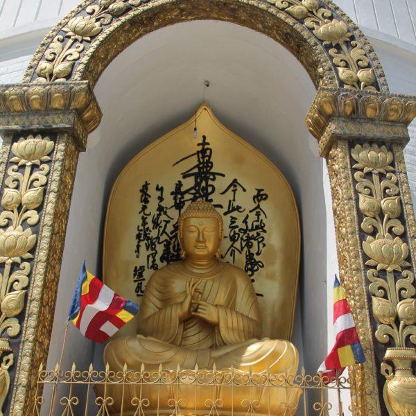 El buddha frontal