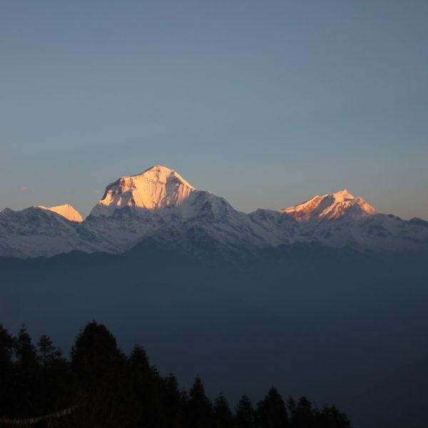 Los primeros rayos de sol iluminan la cima del Dhaulagiri (8171m)