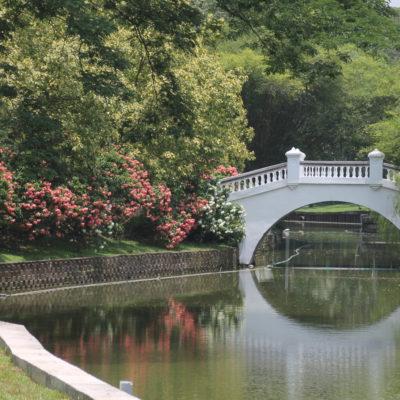 Tranquilo y bonito, el paseo por el parque del Lago hubiera sido maravilloso si no hubiera sido por el sofocante calor