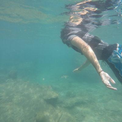 Nico y uno de los tiburones de coral