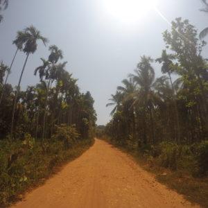 Horribles caminos para conducir rodeados de bonito paisaje