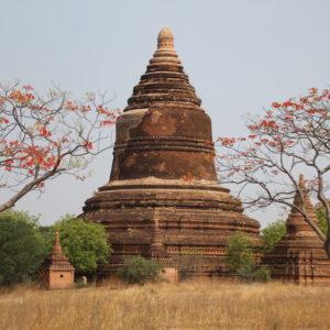 Entre los templos también se encuentran las pagodas, con forma más acampanada