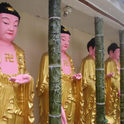 Buddhas y bhuddas por todos lados