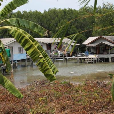 Aunque no supimos de donde entraba, en marea alta el centro de la isla se inunda