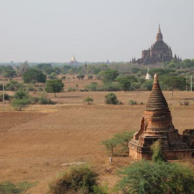 Algo sorprendente de Bagan es que los templos están rodeados de campos de siembra
