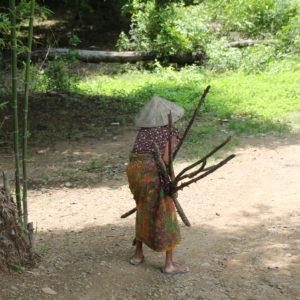 Esta mujer mayor se las apañaba lo mejor que podía para cargar tantos palos