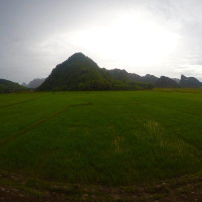 Preciosos campos de arroz verdes con el contraste de las montañas