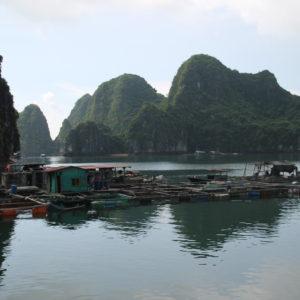Las casas flotantes cerca del puerto demuestran las diferentes maneras de vivir que existen