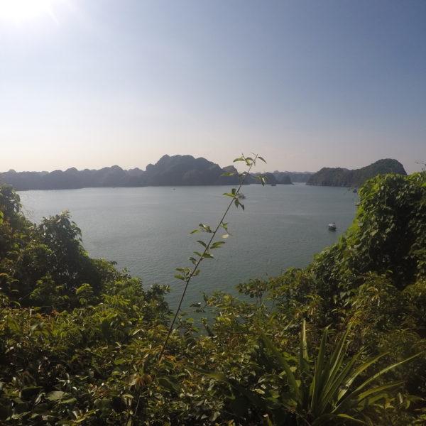 Si hubieramos podido subir hasta arriba del mirador, hubieramos complementado estas vistas con la playa del Monkey Island