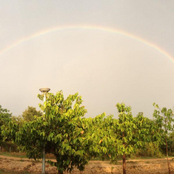 El primer día nos pilló la tormenta y pufimos ver este arcoiris (y medio) en el camino de vuelta